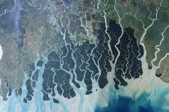 The Bangladeshi Supreme Court has given all rivers in the country legal rights