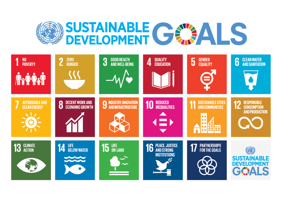 The Sustainable Development Goals, in five minutes