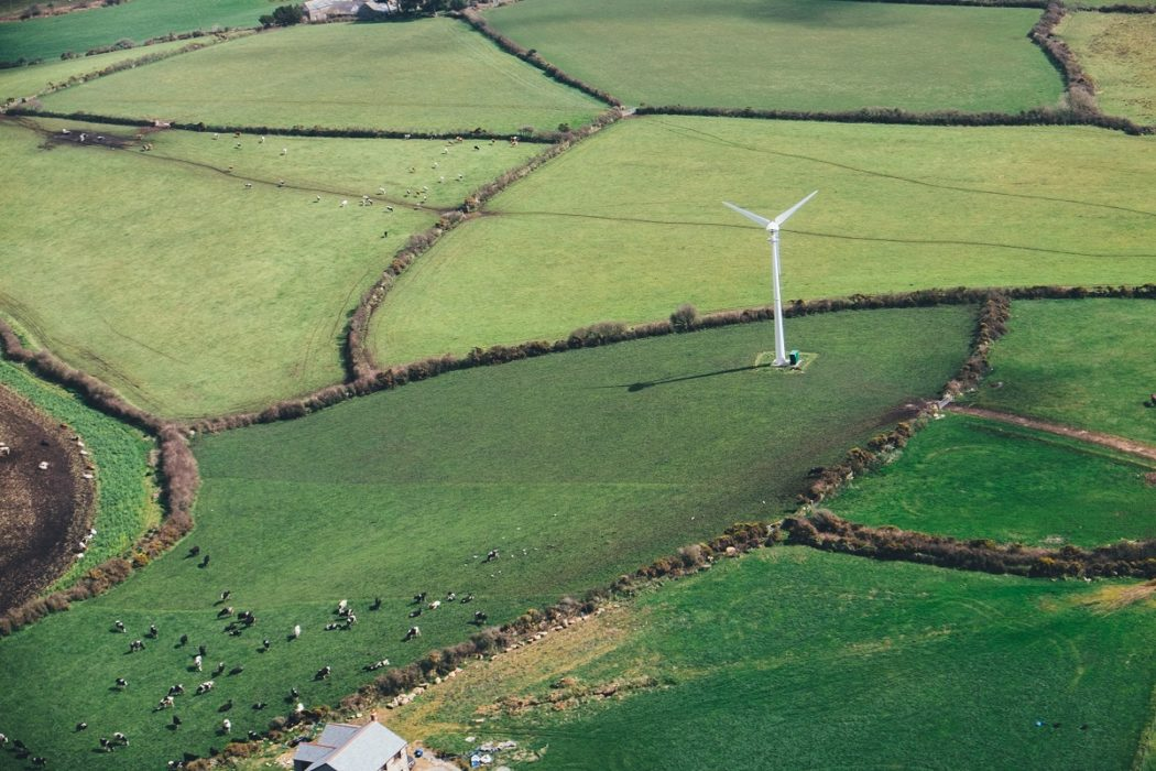 Britain sets new daily record for wind generation
