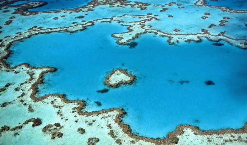 Ambitious 'cloud brightening' experiment launched to restore Great Barrier Reef