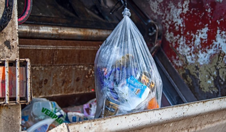 Vermont becomes first U.S. state to ban throwing food waste in trash