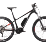 Asambe Electric Bike