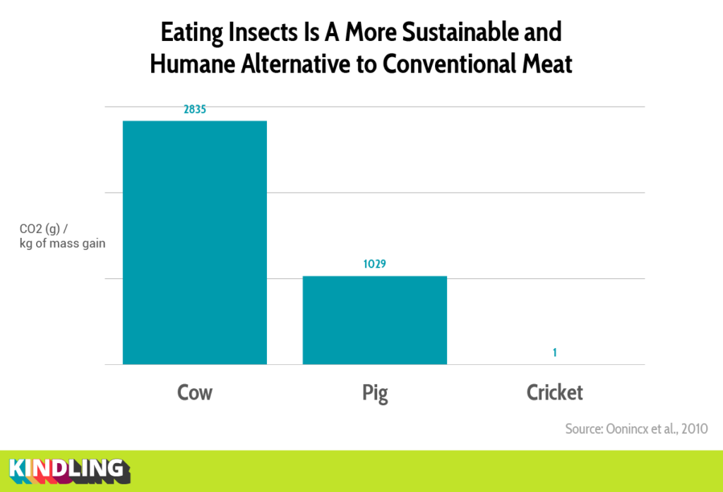 Graph showing low CO2 requirements of crickets compared to pigs and cows